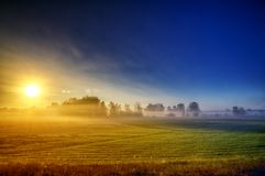 The sun rising over the grasshoppers 2 Stock Photo