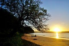 Sun rising over the Playa Blanca beach in Papagayo, Costa Rica. Sun rising over the Playa Blanca beach in Peninsula Papagayo in Guanacaste, Costa Rica royalty free stock photos