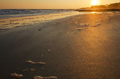 Sun rising over sandy cost of Yeu Island Stock Photography