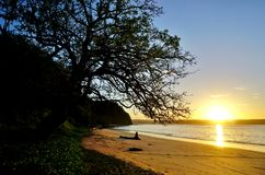 Free Sun Rising Over The Playa Blanca Beach In Papagayo, Costa Rica Royalty Free Stock Photos - 63481298