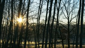 Sun rising over silhouette tree branches on a winter landscape royalty free stock photo