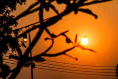 The sun is rising in the sky. During the winter stock photography