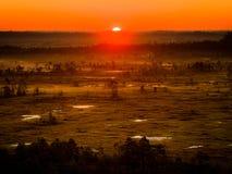 Sun Rising at Swamp Royalty Free Stock Photo
