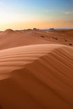 Deserts riyadh nature   Stock Images