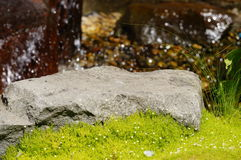 Sun rock. A rock catches the summer sun with green grass in the front and water in the back Stock Images