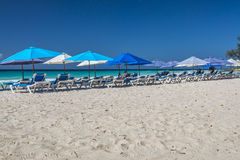 Sun-Ruhesessel an Rockley-Strand Barbados Stockbilder
