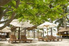 Sun-Ruhesessel und -sonnenschirme auf dem Strand mit Palme Lizenzfreie Stockbilder