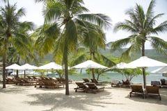 Sun-Ruhesessel und -sonnenschirme auf dem Strand mit Palme Stockfotografie