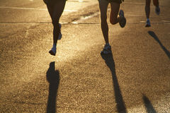 Sun Runners. Three female marathon runners head out of the rising sun during the opening stages of a race stock photo