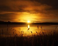 Sun, Rushes, Morning, Sky, Water Stock Photography