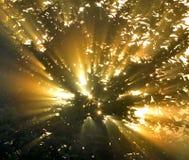 Sun's rays through the foliage Stock Photos