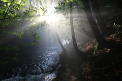 The sun`s rays illuminate the dark gorge Royalty Free Stock Images