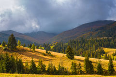 The sun`s rays illuminate the mountain valley after the rain. Stock Photos