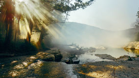 The sun`s rays light through the trees and fog against the background of a mountain river. Morning landscape Stock Photography