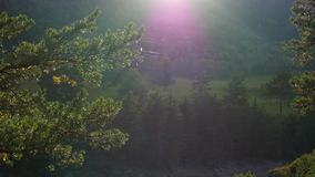 The sun's rays over the mountain river. Beautiful the sun's rays over the mountain river stock footage