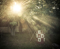The sun's rays passing through the pear and lighting plot. tinte Stock Images