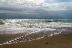 The sun's rays passing through the storm clouds over the sea Royalty Free Stock Photography