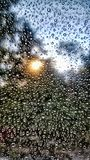 The sun`s rays in rain drops stock photography