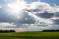The sun`s rays from Stock Photo