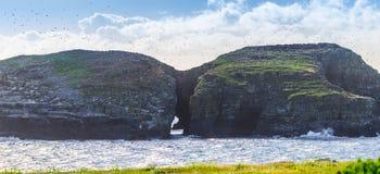 Sun scheint auf Vogelinsel in Maberly, Neufundland lizenzfreie stockfotografie