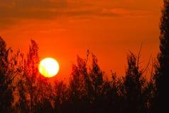 Sun se alza por la mañana Fotografía de archivo libre de regalías