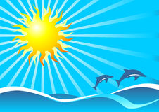 Sun Sea And Dolphins Stock Photo