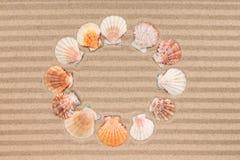 Sun from sea shells on wavy sand. Stock Photo