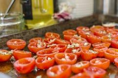 Sun secou os tomates caseiros Foto de Stock Royalty Free