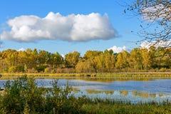 Sun See-Herbstlandschaft Lizenzfreie Stockfotos