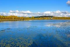 Sun See-Herbstlandschaft Stockfotografie