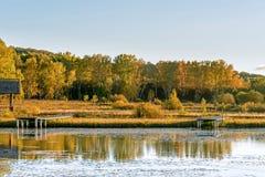 Sun See und weiße Birke im Herbst Lizenzfreies Stockfoto