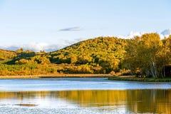 Sun See und weiße Birke im Herbst Stockfotos