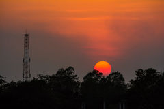 Sun Set and Antanna. And gold sky Royalty Free Stock Images