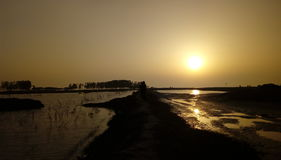 Sun set. Royalty Free Stock Photo