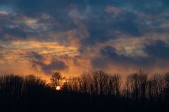 Sun set behind bare trees in winter - golden rules royalty free stock image