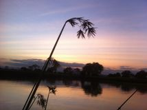 Sun set in Mikumi national Park. A green grass along the pool side Royalty Free Stock Photo