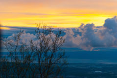 Sun Set Over Trees. The sun set over trees on a spring night Royalty Free Stock Photography