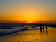The Sun Set And Silhouette at the Coronado Beach in San Diego  i Stock Photos