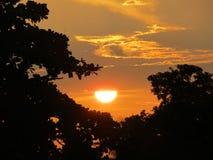 Sun set during summer days. Sun set summer days dark orange nature natural beauty beautiful stock images