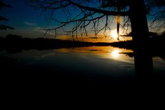 Dry Lake Sunset IV. The Sun sets on Dry Lake in Michigans Upper Peninsula, behind the dark silhouettes of trees and branches royalty free stock photos