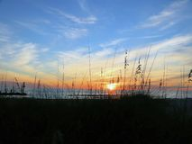 The sun sets through a grassy foreground. Viewing a sunset over the Gulf of Mexico through seagrass stock photography