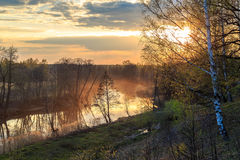 The sun sets over the river. The water mist on the birch young leaves Royalty Free Stock Images