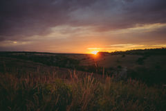 Sun sets over the tops of forest trees in clouds. Panoramic photo of purple, orange and dark clouds in the sky Royalty Free Stock Photo