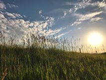 Free Sun Setting Behind Grassy Green Hill. Royalty Free Stock Images - 119194509