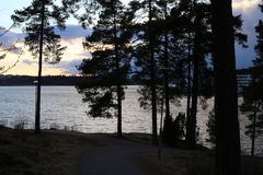 Sun is Setting Behind a Little Forest in Finland. Sun is setting behind a little forest. In the background you can see the Baltic Sea. The sky is colorful royalty free stock photos