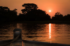 Sun setting behind silhouetted trees from boat Royalty Free Stock Photos