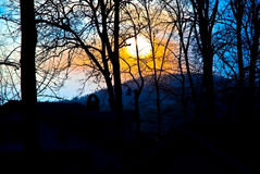 Sun Setting Behind Trees Royalty Free Stock Image