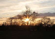 Sun setting behind a wintery treescape. Stock Photography