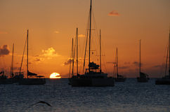 Sun Setting over Sailboats. Moored in Bay Stock Photos