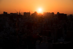 Sun setting over Tokyo city Royalty Free Stock Photo